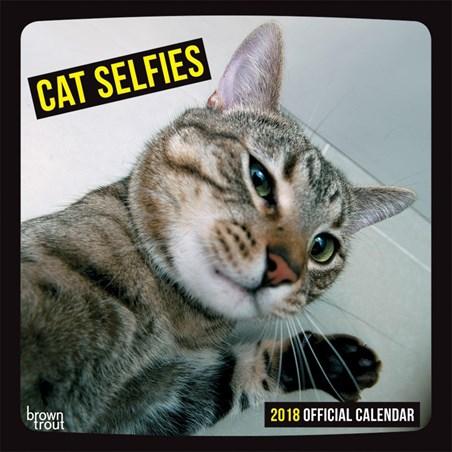 I'm too fabulous! - Cat Selfies