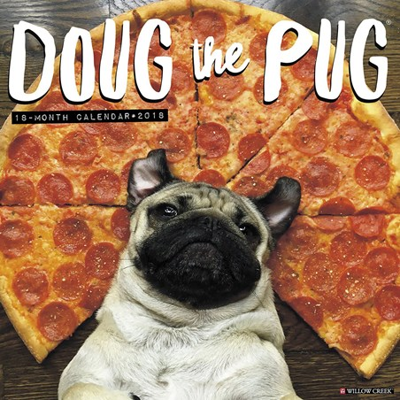 It's a Dogs Life - Doug the Pug