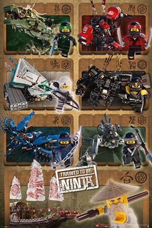 Framed Ninjas & Mechs - LEGO® Ninjago