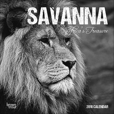 Africa's Treasure - Savanna