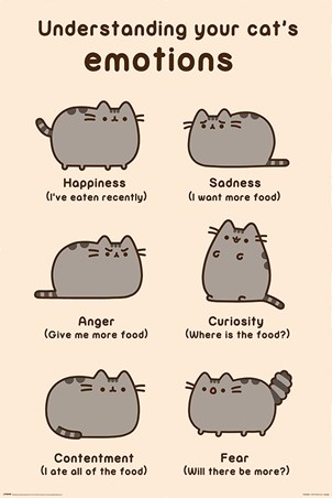 Cats Emotions - Pusheen