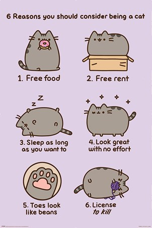 Reasons To Be A Cat - Pusheen