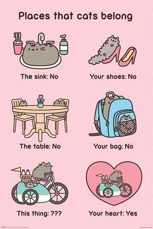 Places Cats Belong, Pusheen