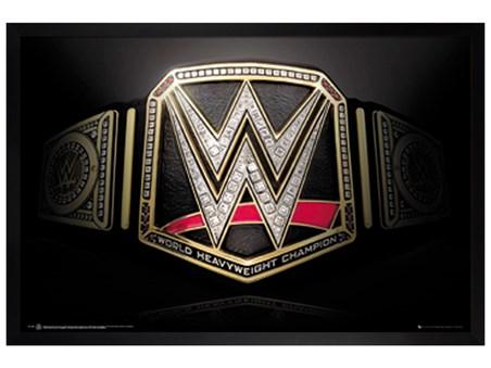 Black Wooden Framed Title Belt - WWE