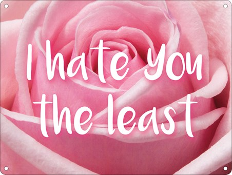 I Hate You The Least - I Can Be Affectionate