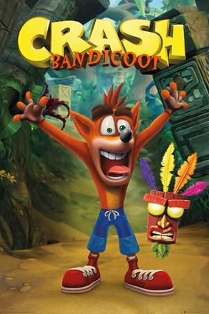 Framed Crash and Aku Aku - Crash Bandicoot