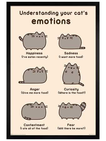 Black Wooden Framed Cats Emotions - Pusheen