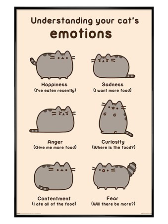 Gloss Black Framed Cats Emotions - Pusheen