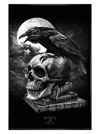 Gloss Black Framed Poe's Raven - Alchemy