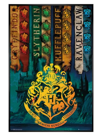 Gloss Black Framed House Flags - Harry Potter