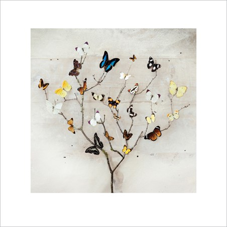Tree of Butterflies - Ian Winstanley