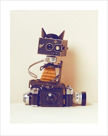 Robot Cat - Ian Winstanley