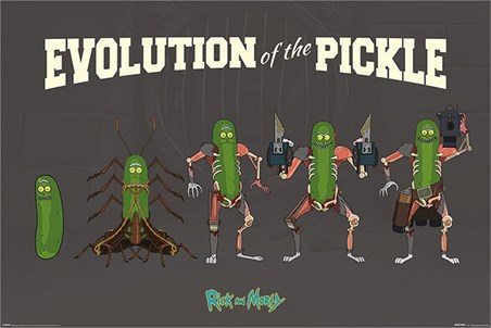 Evolution Of The Pickle - Rick and Morty