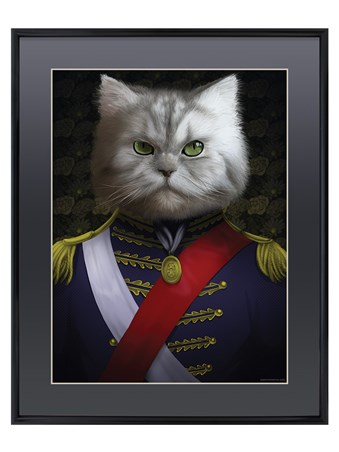 Framed Admiral Whiskers - Kitty Command