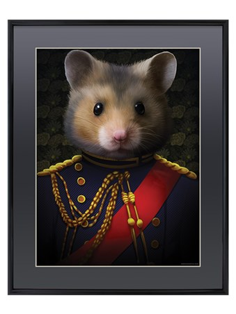 Captain Squeak - Field Mouse Of Combat