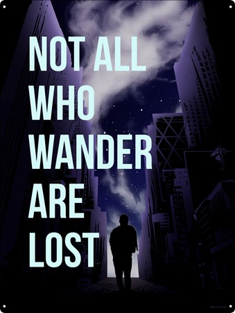 Not All Who Wander Are Lost, A Starry Sky