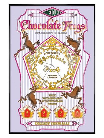 Framed Gloss Black Framed Chocolate Frogs - Harry Potter