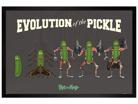 Black Wooden Framed Evolution Of The Pickle - Rick and Morty