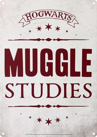 Hogwarts Muggle Studies - Harry Potter