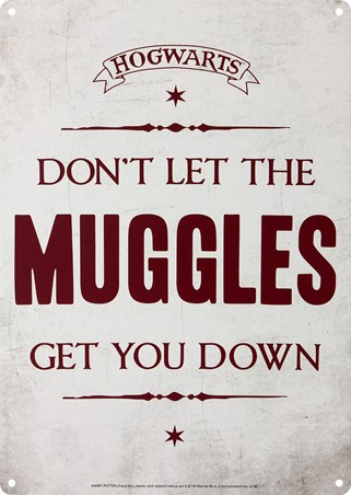 Framed Don't Let The Muggles Get You Down - Harry Potter