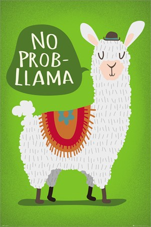 Llama No Probllama - Take It From Me