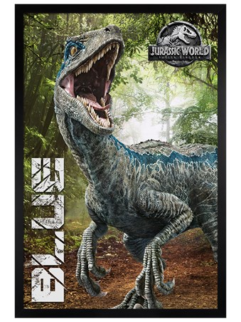 Black Wooden Framed Fallen Kingdom Blue - Jurassic World