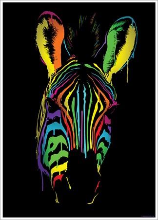 Neon Zebra - Unorthodox