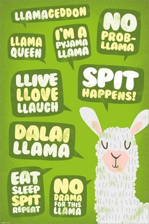 Spit Happens! - Llama Quotes