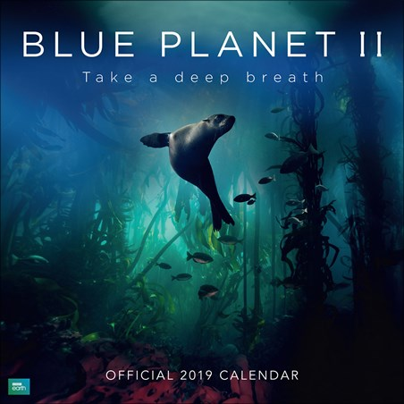 Take A Deep Breath - Blue Planet II