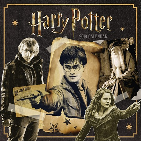 A Magical Year - Harry Potter