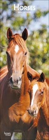 Lively Geldings - Horses