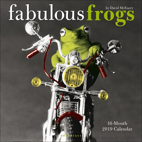 Fabulous Frogs - David McEnery