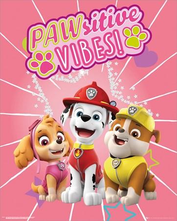 Pawsitive Vibes - Paw Patrol