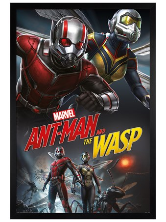 Black Wooden Framed Dynamic - Ant-Man and The Wasp