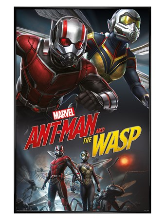 Gloss Black Framed Ant-Man and The Wasp Dynamic - Marvel