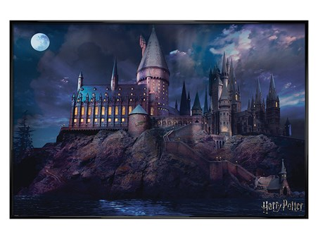 Gloss Black Framed Hogwarts - Harry Potter