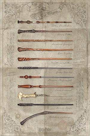 The Wand Chooses The Wizard - Harry Potter