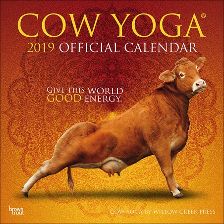 When In Doubt Go To Yoga! - Cow Yoga