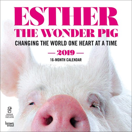 Changing The World One Heart At A Time - Esther The Wonder Pig