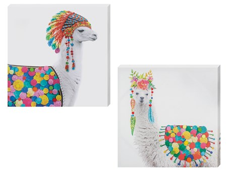 A Colourful Duo - Set of 2 - Funky Llamas