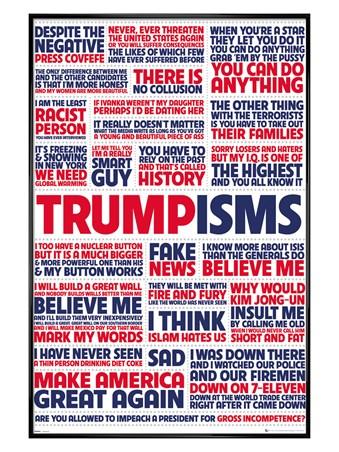 Gloss Black Framed Trumpisms - President Trump