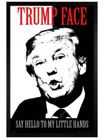 Black Wooden Framed Say Hello To My Little Hands - Trump Face