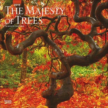Treemendous - The Majesty of Trees