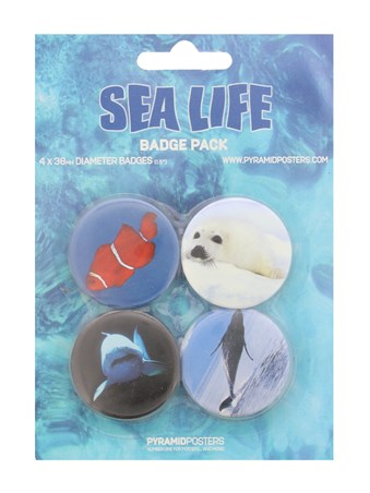 Framed Clown Fish, Seal Pup, Shark and Whale - Sea Life Button Badge Pack