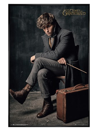 Gloss Black Framed Newt Scamander - Fantastic Beasts 2