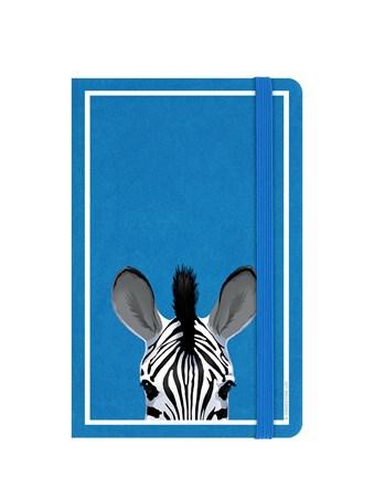 Zebra - Inquisitive Creatures