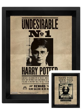 3D Undesirable No 1 - Harry Potter