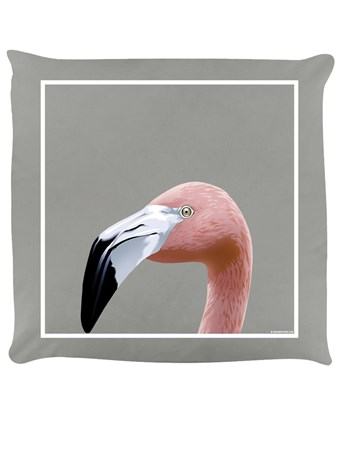 Fancy Flamingo - Inquisitive Creatures