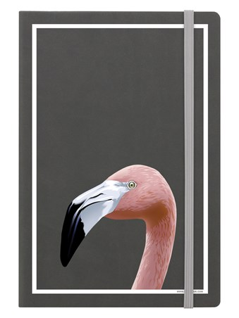 Flamingo - Inquisitive Creatures