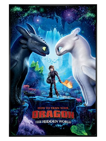 Gloss Black Framed The Hidden World - How To Train Your Dragon